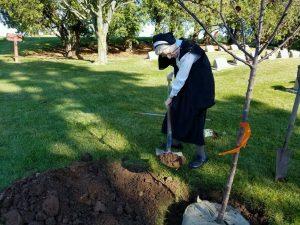 memorial planting