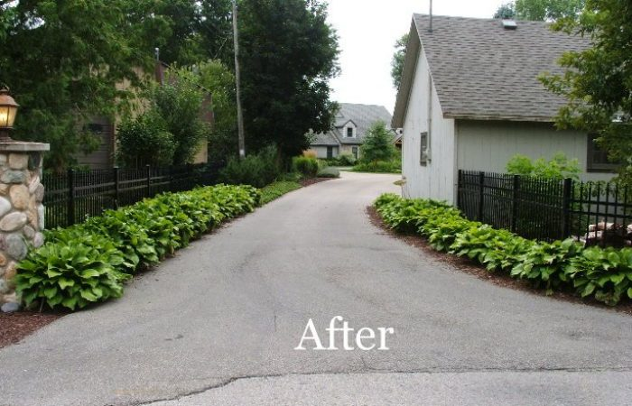 Before_after_024