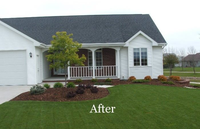 Before_after_083