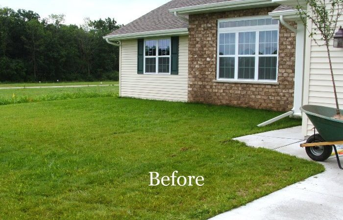 Before_after_088