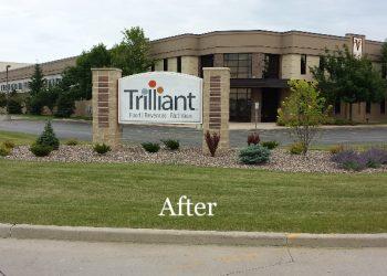 Trilliant_01b